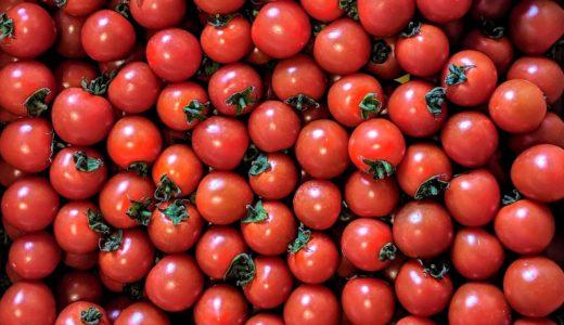 ちょんまげ農園(大分県佐伯市)のミニトマト販売中です。