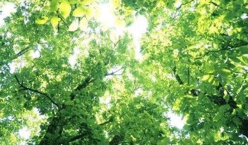 10/4(日)水塾@国分寺 by 惣川修さん